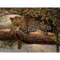 """Схема вышивки s02le-009 """"Леопард на дереве"""""""