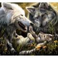"""Схема вышивки s02vol-005 """"Волки"""""""